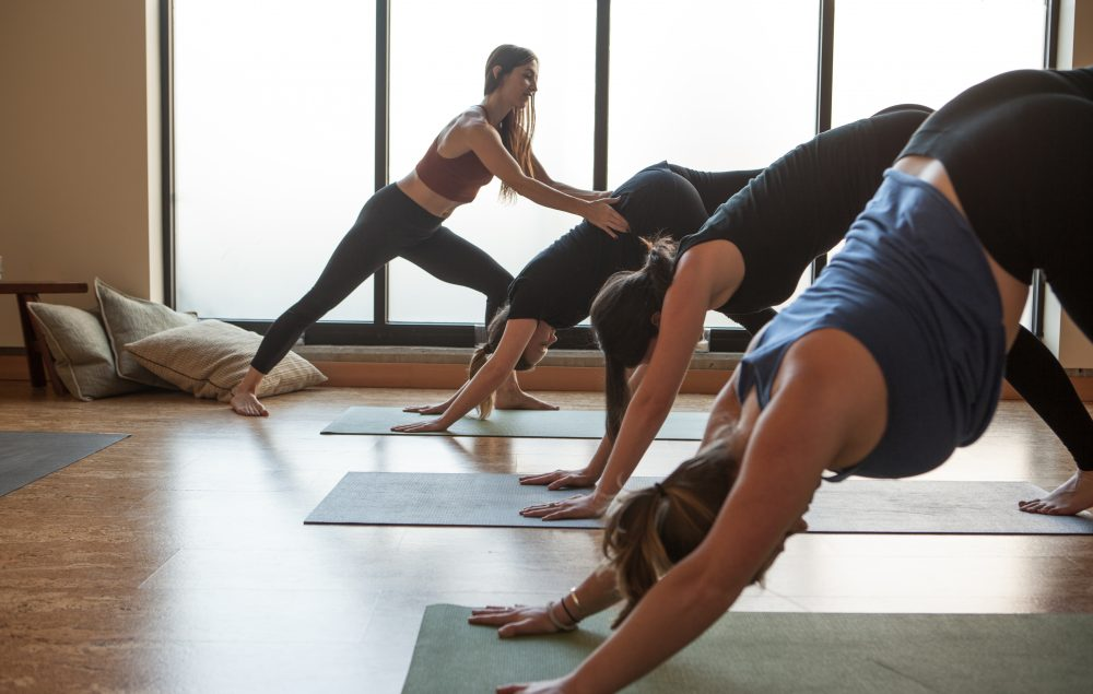 Yoga | Yoga Benefits | Yoga Classes And Lessons In Portland,  Oregon - Root Whole Body offers yoga classes and yoga lessons. Reserve a yoga class now that can make a huge and lasting difference to your life.